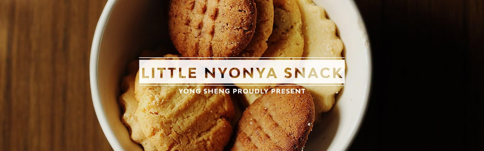 Little Nyonya Snack Series